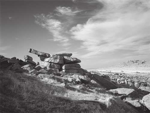 on Great Staple Tor