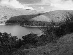 Meldon Reservoir on Dartmoor, showing growth of vegetation near water's edge
