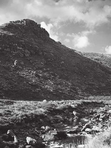 Sharp Tor, Tavy Cleave